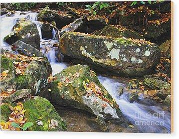 Autumn Mountain Stream Wood Print by Thomas R Fletcher