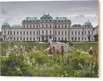 Belvedere Palace Wood Print by Andre Goncalves