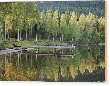 Birches And Reflection Wood Print