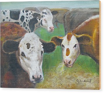 3 Cows Wood Print by Oz Freedgood