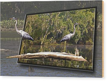3-d Great Blue Crane Wood Print by Michael Whitaker