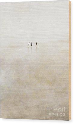 3 Girls Running Wood Print by Paul Grand