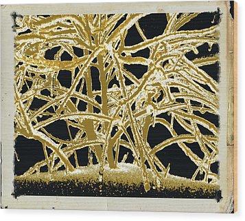 Grounded In Earth  - Series 1 Wood Print by Debra     Vatalaro