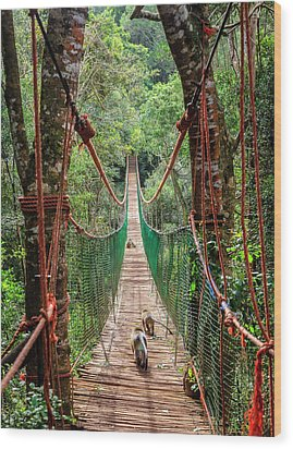 Wood Print featuring the photograph Hanging Bridge by Alexey Stiop
