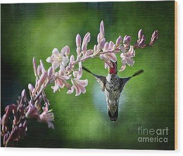 Hummingbird  Wood Print by Saija  Lehtonen