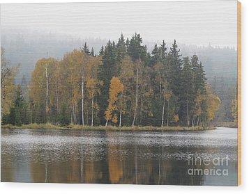 Wood Print featuring the photograph Kladska Peats by Michal Boubin
