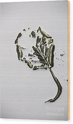 Leaf Wood Print by Bernard Jaubert