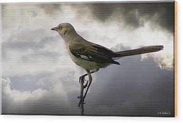 Mockingbird Wood Print by Brian Wallace