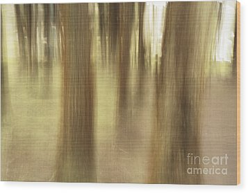 Nature Abstract Wood Print by Gaspar Avila