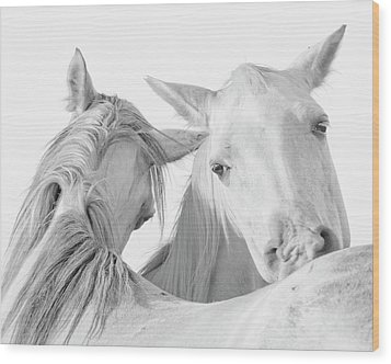 Pals Wood Print by Ron  McGinnis