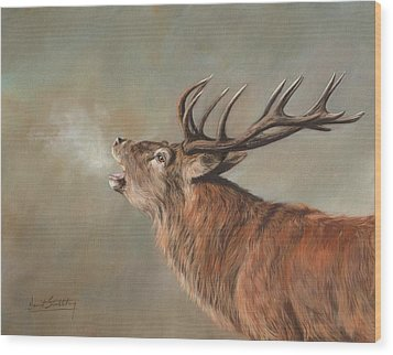 Wood Print featuring the painting Red Deer Stag by David Stribbling
