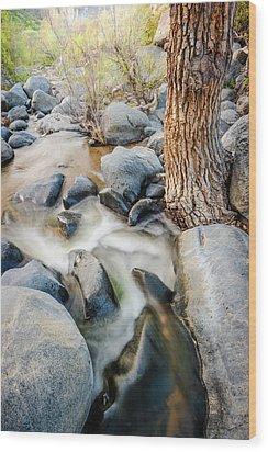 Wood Print featuring the photograph Santa Ysabel Creek by Alexander Kunz