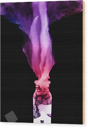 Spirit Bottle Wood Print by Katherine Huck Fernie Howard