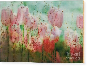 Tulips  Wood Print by Iris Greenwell