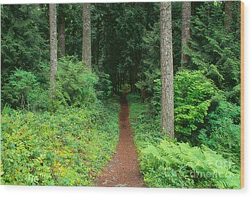 View Of Oregon Wood Print by Greg Vaughn - Printscapes