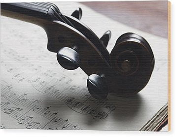Violin Wood Print by Nichola Evans