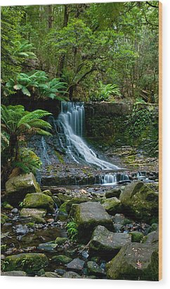 Waterfall In Deep Forest Wood Print by Ulrich Schade