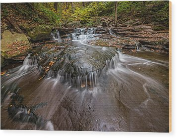 Ricketts Glen State Park Pennsylvania Cascades Wood Print by Rick Dunnuck