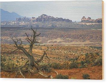 #3090 - Moab, Utah Wood Print