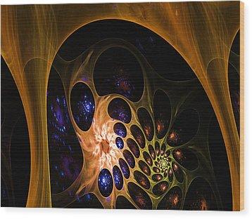 3d Chaotica Wood Print by Ernst Dittmar