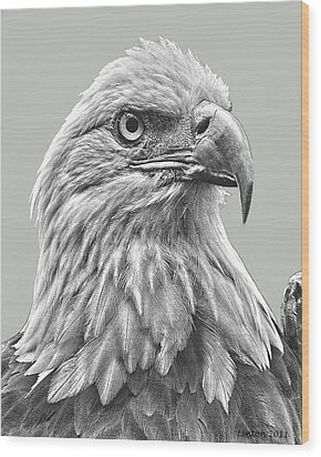 American Bald Eagle Wood Print by Larry Linton