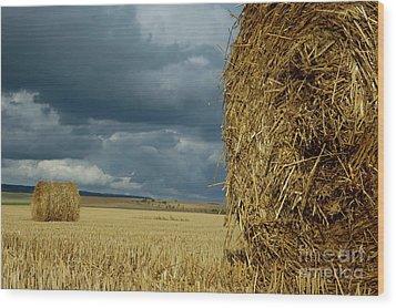 Hay Bales In Harvested Corn Field Wood Print by Sami Sarkis