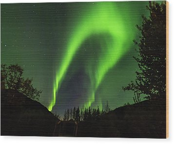 Northern Lights, Aurora Borealis At Kantishna Lodge In Denali National Park Wood Print by Brenda Jacobs