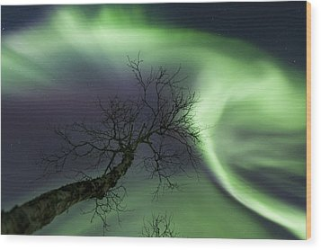 Northern Lights In The Arctic Wood Print by Arild Heitmann