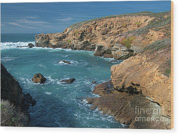 Point Lobos Wood Print by Glenn Franco Simmons