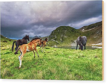 Rila Mountain Wood Print by Evgeni Dinev