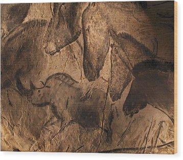 Stone-age Cave Paintings, Chauvet, France Wood Print by Javier Truebamsf