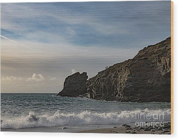 Wood Print featuring the photograph Trevellas Cove Cornwall by Brian Roscorla