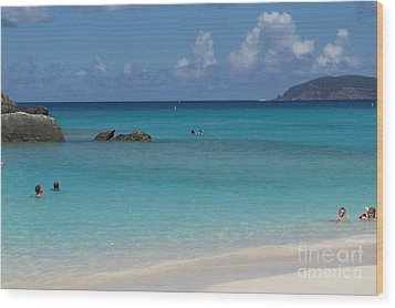 Wood Print featuring the photograph Trunk Bay by Carol  Bradley