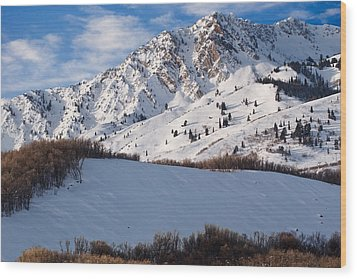 Winter In The Wasatch Mountains Of Northern Utah Wood Print