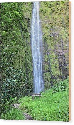 400 Foot Waimoku Falls Maui Wood Print by Pierre Leclerc Photography
