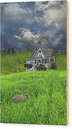 Wood Print featuring the photograph 4379 by Peter Holme III
