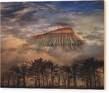 Wood Print featuring the photograph 4381 by Peter Holme III