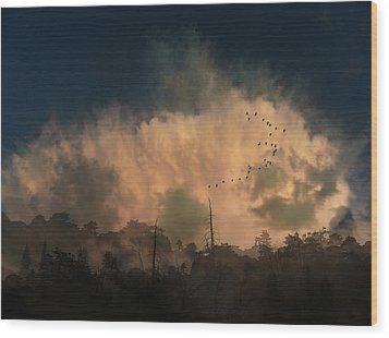 Wood Print featuring the photograph 4382 by Peter Holme III