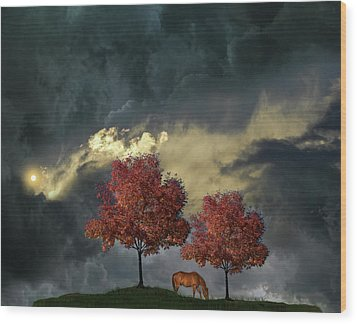 Wood Print featuring the photograph 4384 by Peter Holme III