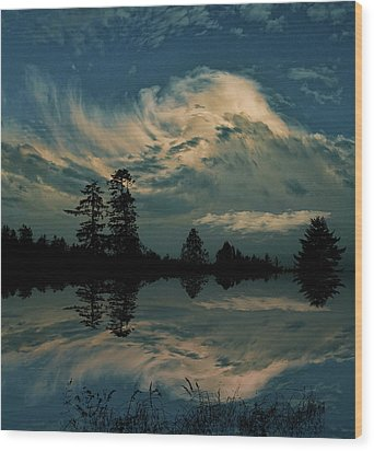 Wood Print featuring the photograph 4395 by Peter Holme III