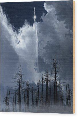Wood Print featuring the photograph 4404 by Peter Holme III