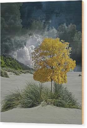 Wood Print featuring the photograph 4422 by Peter Holme III