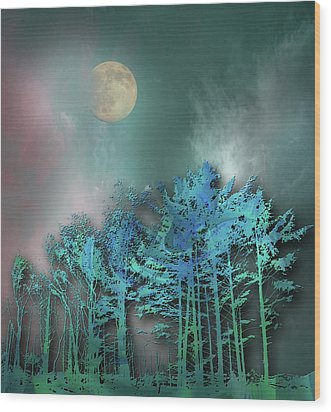 Wood Print featuring the photograph 4480 by Peter Holme III