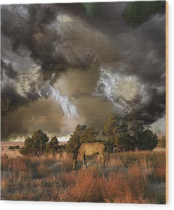 Wood Print featuring the photograph 4486 by Peter Holme III