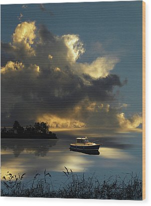 Wood Print featuring the photograph 4487 by Peter Holme III