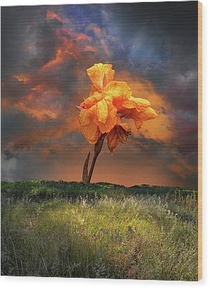Wood Print featuring the photograph 4490 by Peter Holme III