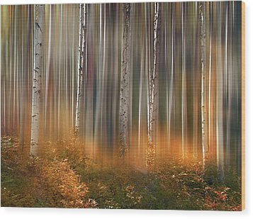Wood Print featuring the photograph 4497 by Peter Holme III