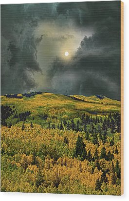 Wood Print featuring the photograph 4498 by Peter Holme III