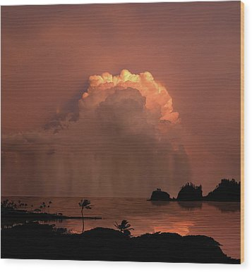 Wood Print featuring the photograph 4503 by Peter Holme III