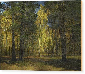 Wood Print featuring the photograph 4508 by Peter Holme III